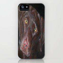 Inquisitive Chocolate Labrador iPhone Case