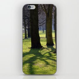 2009 - Park (High Res) iPhone Skin