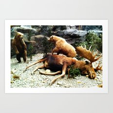 Grizzly Fight Art Print