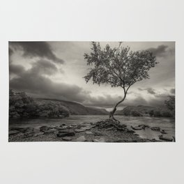 The Lonely Tree Snowdonia Wales Journey of Mountains Rug