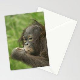 Baby Orangutan  Stationery Cards