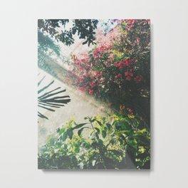 Botanical tropical Metal Print