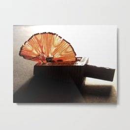 Pencil Shaving Metal Print