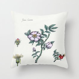 Plants & Herbs Edition Throw Pillow
