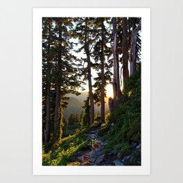 Baker, Sunset Hike Art Print