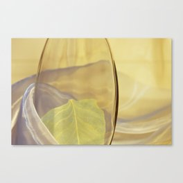 Transparency Canvas Print