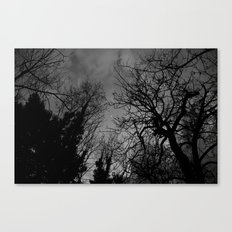 Good evening moon Canvas Print