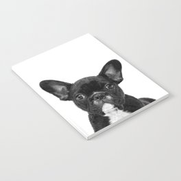 Black and White French Bulldog Notebook