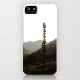 sunset in angeles crest forest iPhone Case