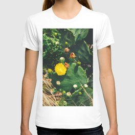 Gimme All Your Love T-shirt