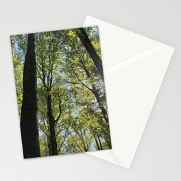 Liriodendron Stationery Cards