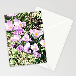 Hedgerow Stationery Cards