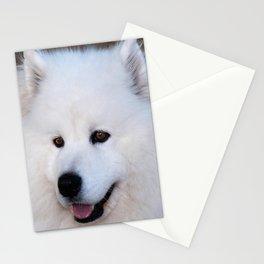 Samoyed Stationery Cards