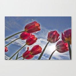 Tulips with Sun Star Canvas Print