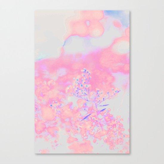 Chamomile #society6 #decor #buyart Canvas Print