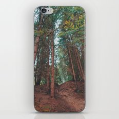 into the woods 05 iPhone & iPod Skin