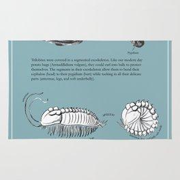 Trilobite Enrollment poster Rug