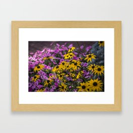 Complementary Colors Framed Art Print