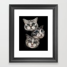 THE TRIO Framed Art Print