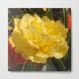 Sunny Yellow Tulip Metal Print
