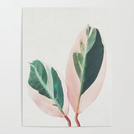 Pink Leaves I Poster