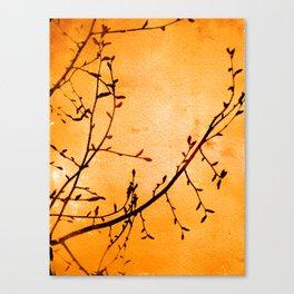 Harvest Vine Canvas Print