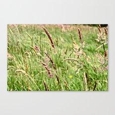 Field Canvas Print