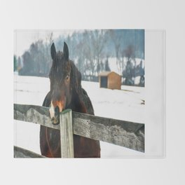 Thoughtful Horse Throw Blanket