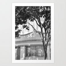 Frames of Timber Art Print