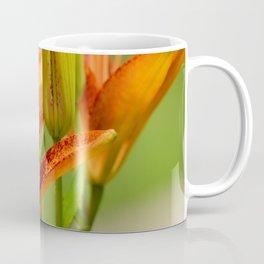 Asiatic Lilies Coffee Mug