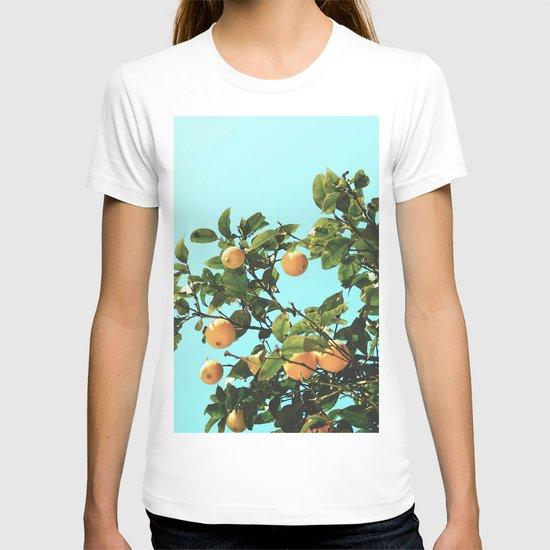 Summer Orange Tree by judithhoy