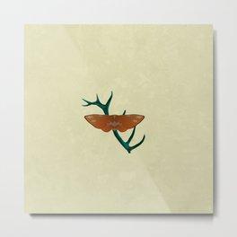 D'Ear Moth Metal Print