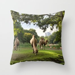 a momentary lapse of reason Throw Pillow