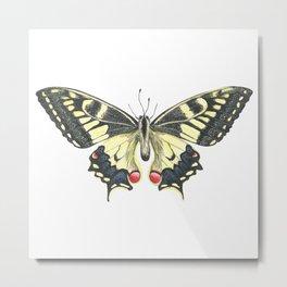 Butterfly in Watercolor Metal Print