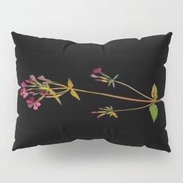 Phlox Carolina Mary Delany Vintage British Floral Flower Paper Collage Black Background Pillow Sham