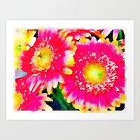 Pink & Yellow Gerbera Daisies Art Print
