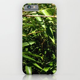 Nature and Greenery 9 iPhone Case