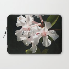 Candy in the Sun Laptop Sleeve