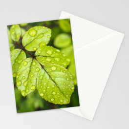 Plant Patterns - Green Scene Stationery Cards