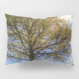 English Summer Farm Pillow Sham