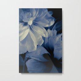 White peonies background Metal Print
