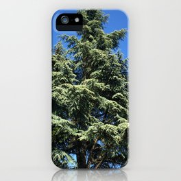 Kubota Garden tree from ground perspective iPhone Case