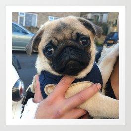 Cutest Pug Ever Art Print