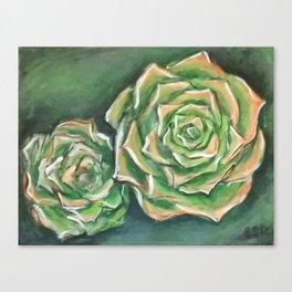 Green Succulents Canvas Print
