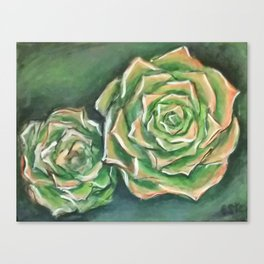Green Succulents Canvas Print