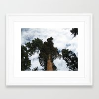 giants Framed Art Prints featuring Giants by Jardine Photography