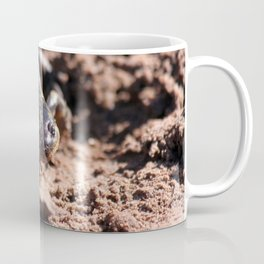 Tiger Salamander Coffee Mug