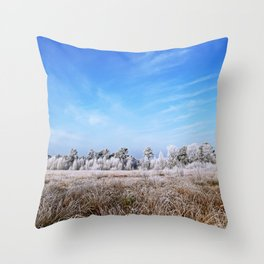 Swamp in winter in Germany Throw Pillow