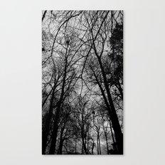 Trees at Mottisfont Canvas Print