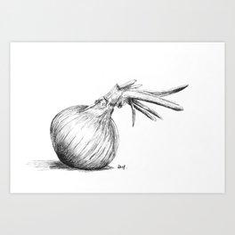 Onion study Art Print